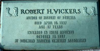Vickers plaque